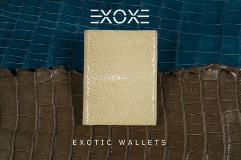 exoxe1